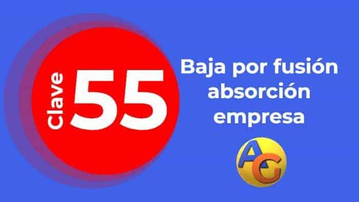 Baja por fusión-absorción empresa clave 55