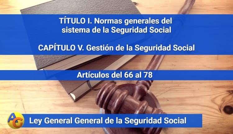 CAPÍTULO V. Gestión de la Seguridad Social